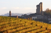 SRL004, A BAROLO winery and vineyard known for its good quality produce
