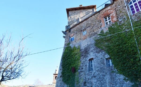 castello in vendita lnaghe (16)