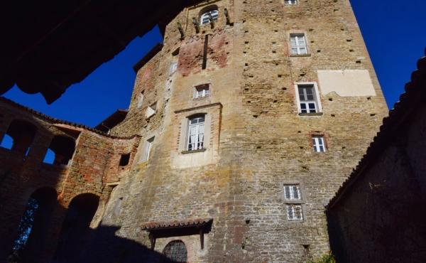 castello in vendita lnaghe (18)