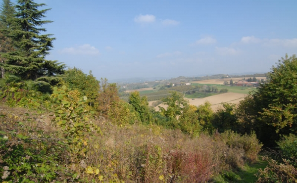 casa-belvedere-langhe-vendita-(2)