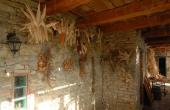 azienda-agricola-vendita-langhe-(32)